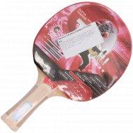 Ракетка для настольного тенниса ST12301.