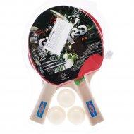 Набор для настольного тенниса 12ST12201.