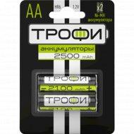 Аккумулятор «Трофи» 2500 mAh, AA, 2 шт.