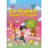 Книга «Большая энциклопедия умного малыша» А.В. Струк.