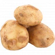Картофель, 1 кг, фасовка 1.5-2 кг