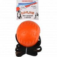Мяч с лентой средний «Doglikel» для животных.