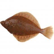 Камбала морская, потрошенная, без головы, охлажденная, 1 кг., фасовка 0.4-0.9 кг