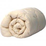 Одеяло «ИвШвейстандарт» Караван, ОКР-18в, 172х205 см