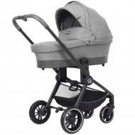 Детская коляска «Rant» Flex Trends 2 в 1 Grey.