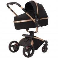 Детская коляска «Rant» Nest 2 в 1 Black.