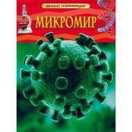 Детская энциклопедия «Микромир».