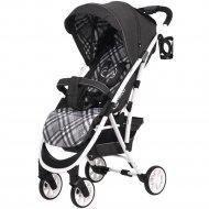 Детская коляска «Rant» Largo Trends Scotland Grey.
