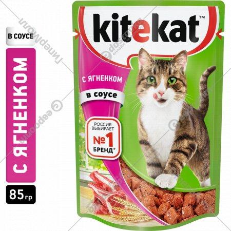Корм для котов