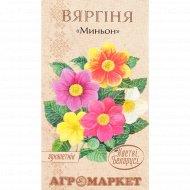 Семена георгины «Миньон» 0.5 г.