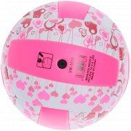 Мяч волейбольный, VM-2830.