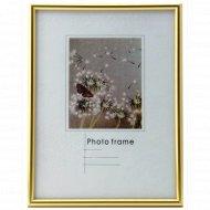 Рамка пластиковая «Poldom» со стеклом, 16414, 10x15 см.