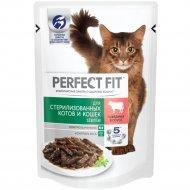 Влажный корм «Perfect Fit» для кошек, с говядиной в соусе, 85г