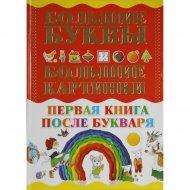 Книга «Первая книга после букваря».