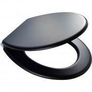 Сиденье для унитаза «Ridder» Atlanta Black, 02102110