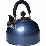 Чайник из нержавеющей стали, цветной, 2.5 л.
