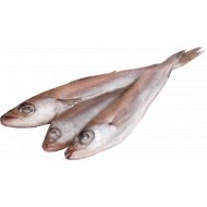 Рыба «Путассу» свежемороженая с головой 1 кг., фасовка 0.8-1.3 кг