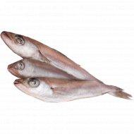 Рыба «Путассу» свежемороженая с головой 1 кг., фасовка 1.15-1.3 кг