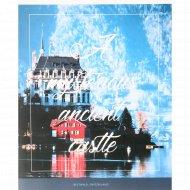 Тетрадь «Путешествия. Mysterious castle» клетка, 48 листов.