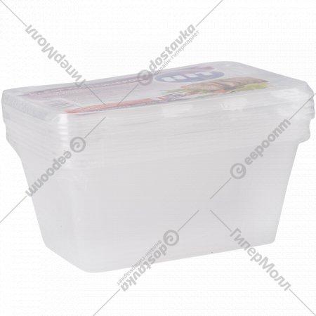 Набор контейнеров для пищевых продуктов 1000 мл, 5 шт.