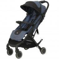 Детская коляска «Rant» Space Blue-Black.