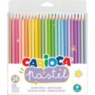 Цветные карандаши «Pastel» 24 штуки
