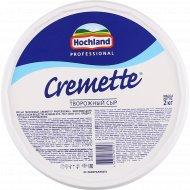 Творожный сыр «Hochland Professional» Cremette, 65%, 2 кг.