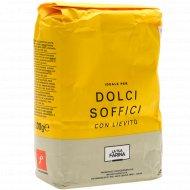 Смесь сухая «Molino Pasini» для сладкой выпечки, 1 кг.