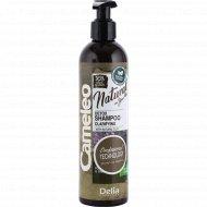 Шампунь очищаюший «Cameleo» для нормальных и жирных волос, 250 мл