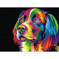 Живопись по номерам «Радужная собака» 30 х 40 см.
