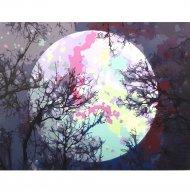 Живопись по номерам «Луна» 30 х 40 см.