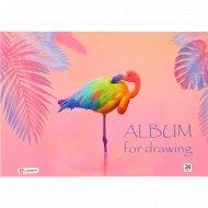 Альбом для рисования, 24 листа, на склейке, ассорти.