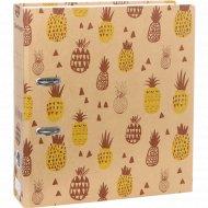 Папка-регистратор «Pineapple» с рисунком.