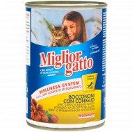 Корм для кошек «Miglior» кусочки в соусе с кроликом, 405 г.