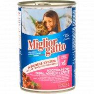 Корм для кошек «Miglior Classik» кусочки рубца и ягненка с морковью в соусе, 405 г.