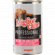 Консерва «Morando» для собак, кусочки в соусе с ягненком, 1.25 кг.