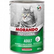 Консерва для кошек «Morando» кусочки в соусе с ягненком, 405 г