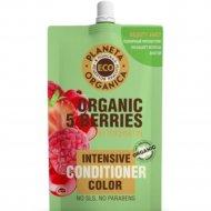 Бальзам «Organic 5 berries» для яркости цвета волос, 200 мл.