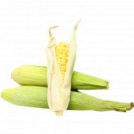 Кукуруза в початках, 1 кг., фасовка 0.25-0.4 кг
