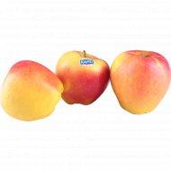 Яблоко «Канзи» 1 кг., фасовка 0.7-0.8 кг