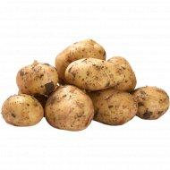 Картофель ранний 1 кг., фасовка 1.79-1.85 кг
