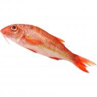 Рыба охлажденная «Барабулька» непотрошеная с головой, 1 кг