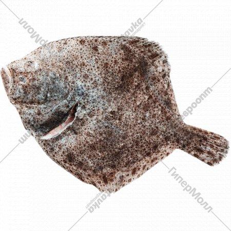 Рыба охлажденная «Тюрбо дикая» потрошеная с головой, 1 кг