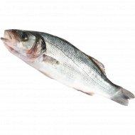 Рыба охлажденная «Сибас» с головой, непотрошеная, 1 кг., фасовка 0.4-0.5 кг