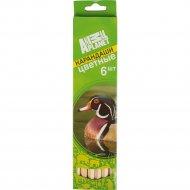 Набор карандашей цветных «Animal Planet» 6 цветов.