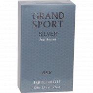 Мужская туалетная вода «Grand Sport» Silver 100 мл