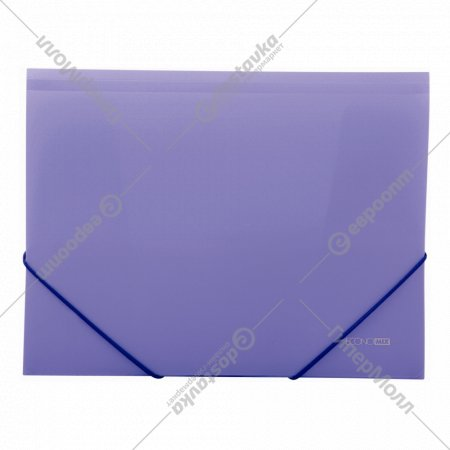 Папка пластиковая «Economix» А4 для документов на резинке.