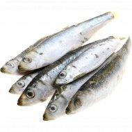 Рыба «Килька» свежемороженая, 1 кг., фасовка 0.8-1.4 кг