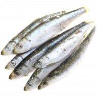 Рыба «Килька» свежемороженая 1 кг., фасовка 0.9-1 кг