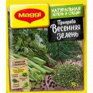 Приправа сухая «Maggi» Весенняя зелень, 75 г.